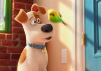 The Secret Life of Pets on Netflix