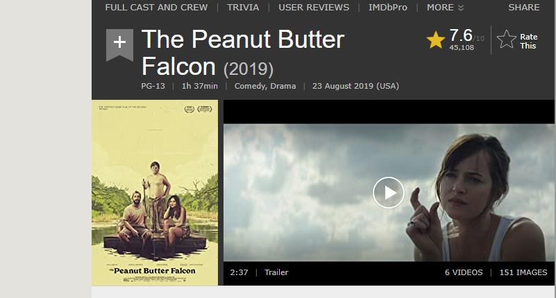 the peanut butter falcon on netflix